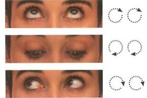 oculares1-300x200